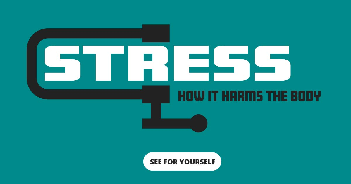 Stress. How it harms the body. See for yourself.